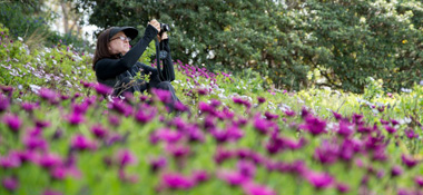 Landscape & Macro Photography Outdoors